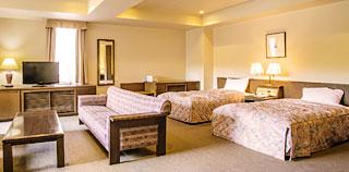 高級雙床客房